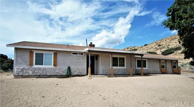 8215 Riggins Road, Phelan, CA 92371 (#IV20067792) :: Crudo & Associates