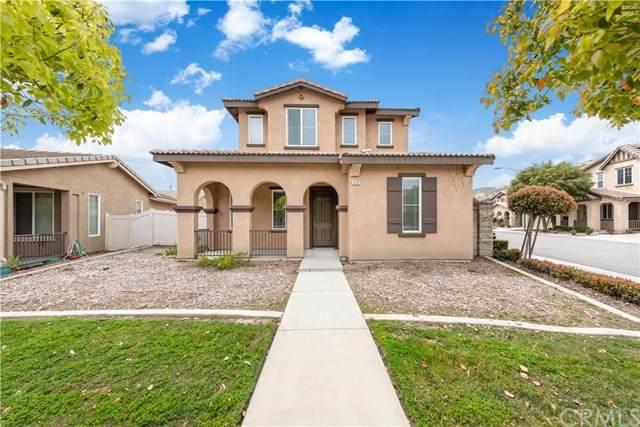 4282 Annatto Lane, Hemet, CA 92545 (#SW20012342) :: RE/MAX Empire Properties