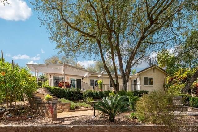10916 Treeside Lane, Escondido, CA 92026 (#200015836) :: Cal American Realty