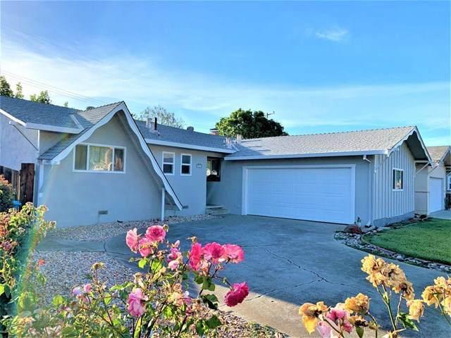 3361 Tracy Drive, Santa Clara, CA 95051 (#ML81788622) :: Apple Financial Network, Inc.
