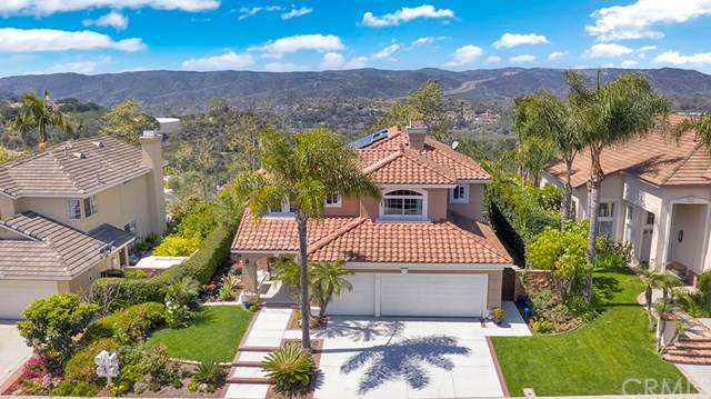 31 Larkspur Drive, Aliso Viejo, CA 92656 (#OC20069072) :: Doherty Real Estate Group