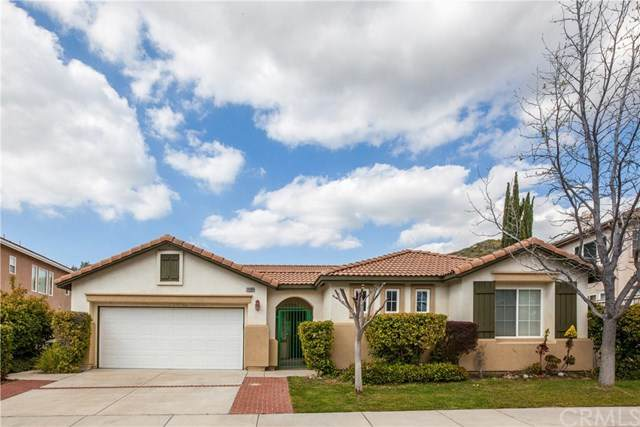 31568 Canyon View Drive, Lake Elsinore, CA 92532 (#PW20069148) :: The Ashley Cooper Team