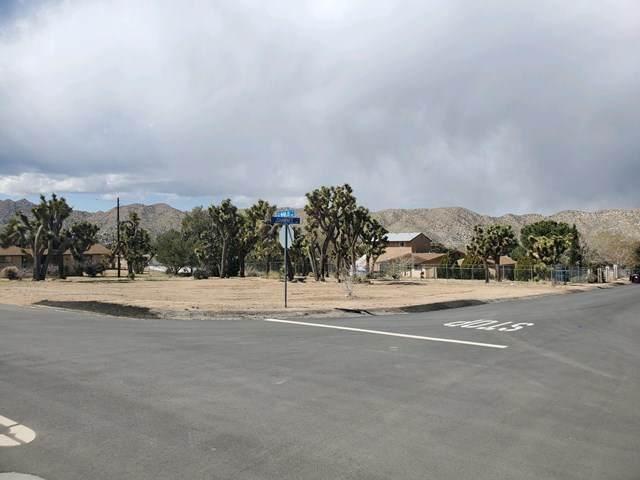 55463 Navajo Trail, Yucca Valley, CA 92284 (#219041578DA) :: Go Gabby