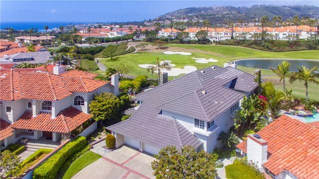 9 Guadalmina Drive, Dana Point, CA 92629 (#LG20004864) :: Doherty Real Estate Group