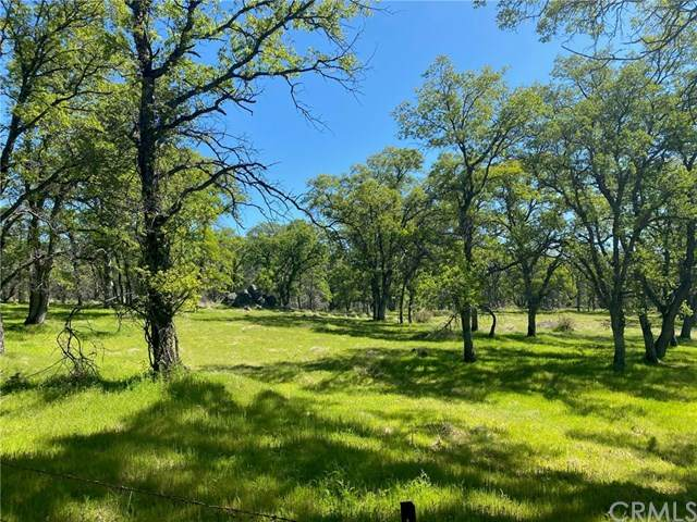 0 Forbestown Road, Oroville, CA 95966 (#SN20069426) :: Doherty Real Estate Group
