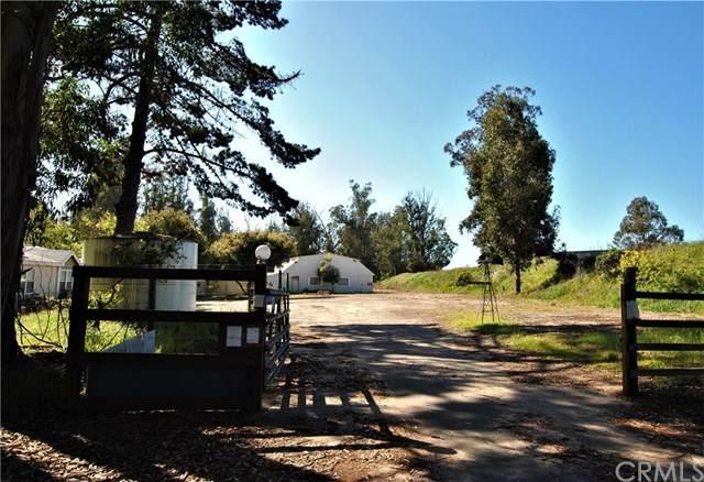 462 Camino Perillo, Arroyo Grande, CA 93420 (#PI20058636) :: Compass