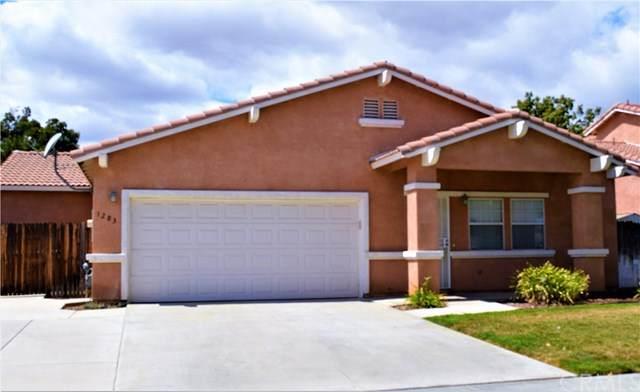 1283 Shenandoah Drive, Hemet, CA 92545 (#SW20069745) :: RE/MAX Empire Properties