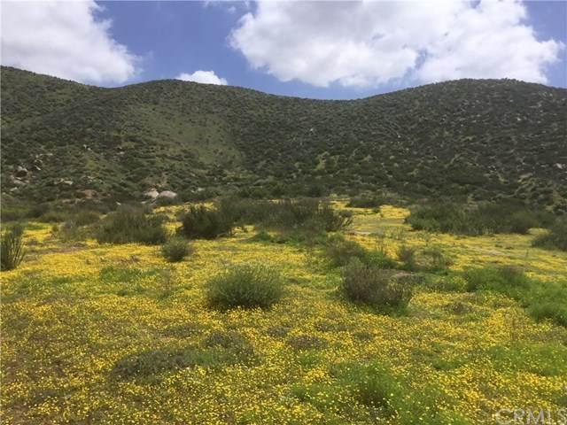 0 Antelope Road, Menifee, CA 92585 (#SW20069852) :: Allison James Estates and Homes