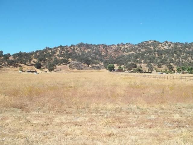 28601 Stallion Springs, Tehachapi, CA 93561 (#220003640) :: The DeBonis Team
