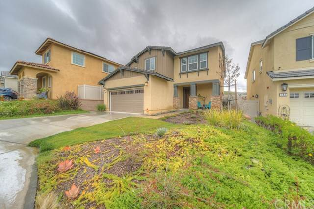 387 Calabrese Street, Fallbrook, CA 92028 (#SW20069889) :: Rogers Realty Group/Berkshire Hathaway HomeServices California Properties