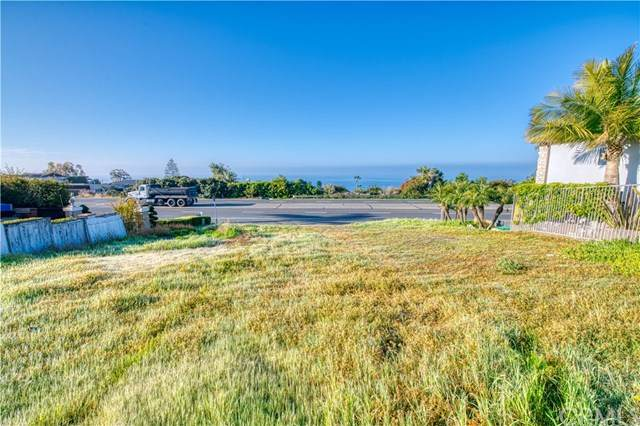 32282 Coast, Laguna Beach, CA 92651 (#OC20069838) :: Pam Spadafore & Associates