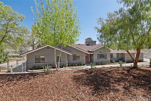 2685 Kashmere Canyon Road, Acton, CA 93510 (#SR20069616) :: RE/MAX Masters