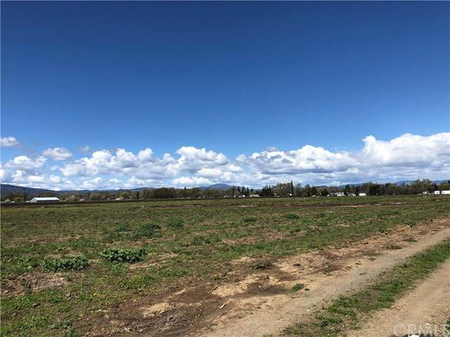 1445 Soda Bay Road, Lakeport, CA 95453 (#LC20070338) :: Case Realty Group