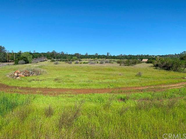 0 Oro Quincy Hwy, Oroville, CA 95966 (#SN20070450) :: Allison James Estates and Homes