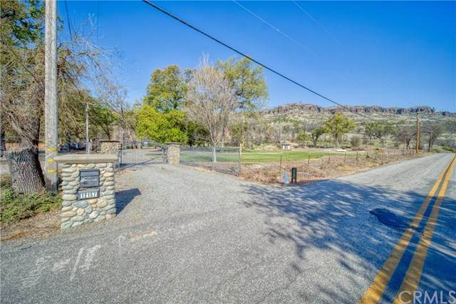 12157 Centerville Road, Chico, CA 95928 (#SN20068466) :: Allison James Estates and Homes