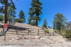 0 Quail Run Road, Big Bear, CA 92315 (#EV20070519) :: Steele Canyon Realty
