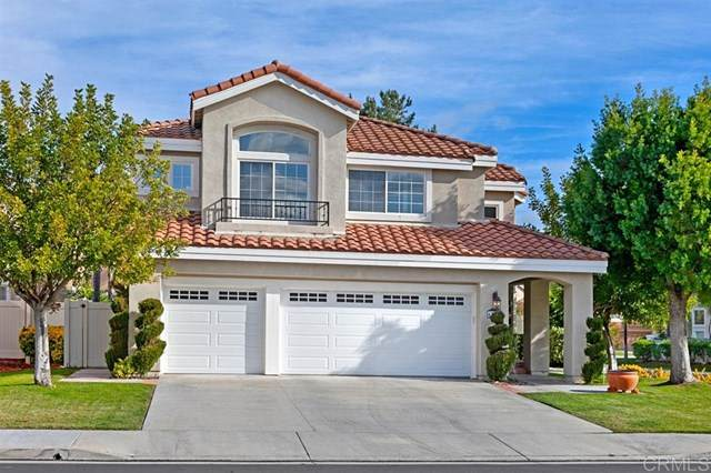 45306 Camino Monzon, Temecula, CA 92592 (#200016409) :: Realty ONE Group Empire