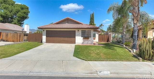 43946 Moonlighting Drive, Hemet, CA 92544 (#SW20066363) :: The Costantino Group | Cal American Homes and Realty