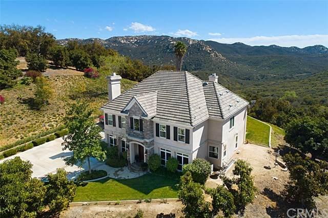 46064 Thyzel Court, Temecula, CA 92590 (#SW20053893) :: The Laffins Real Estate Team