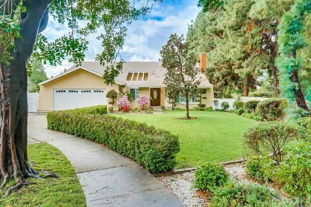 1194 W Myra Court, Upland, CA 91786 (#CV20066173) :: Rose Real Estate Group