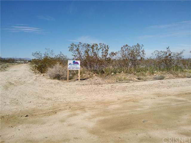 0 175th St E & Ave W14, Llano, CA 93591 (#SR20071251) :: Twiss Realty