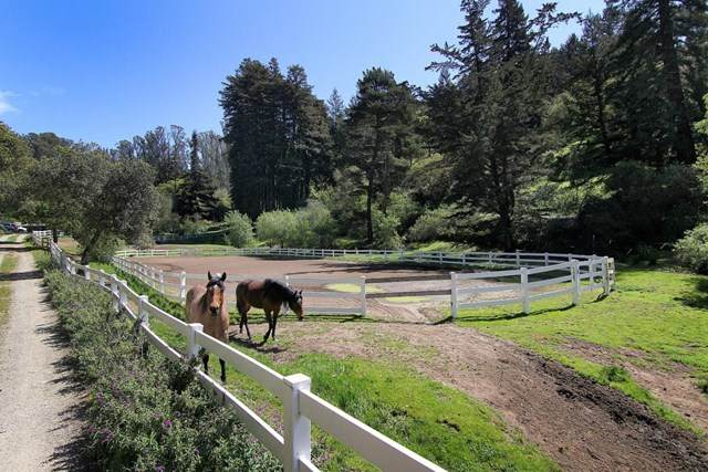 328 White Road, Watsonville, CA 95076 (#ML81788995) :: Case Realty Group