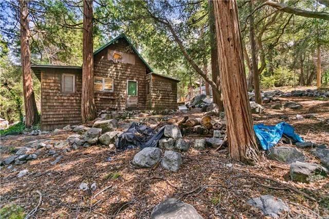 40203 Valley Of The Falls Drive, Forest Falls, CA 92339 (#CV20071389) :: The Costantino Group | Cal American Homes and Realty