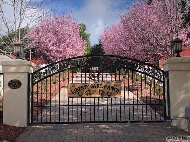 11200 Fox Springs Road, Murrieta, CA 92562 (#OC20073127) :: Allison James Estates and Homes