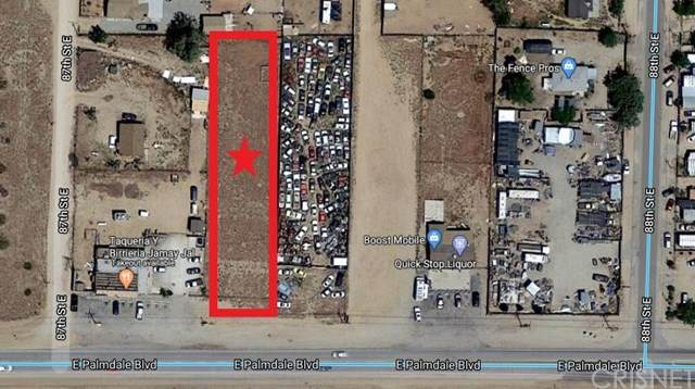 8703 E Vac/Palmdale Bl Pav /Vic 87th Street, Sun Village, CA 93543 (#SR20074139) :: The Results Group