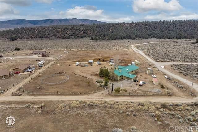 16150 E Mount Lilac Trail, Frazier Park, CA 93225 (#SR20078338) :: Berkshire Hathaway HomeServices California Properties