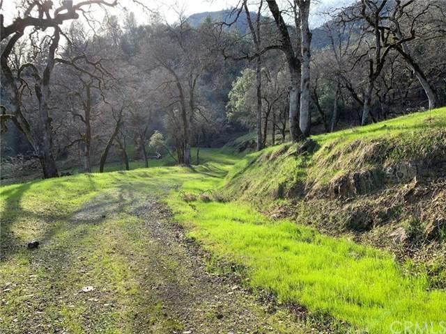 0 Bear Mountain Rd, Redding, CA 96003 (#LC20079808) :: Team Tami