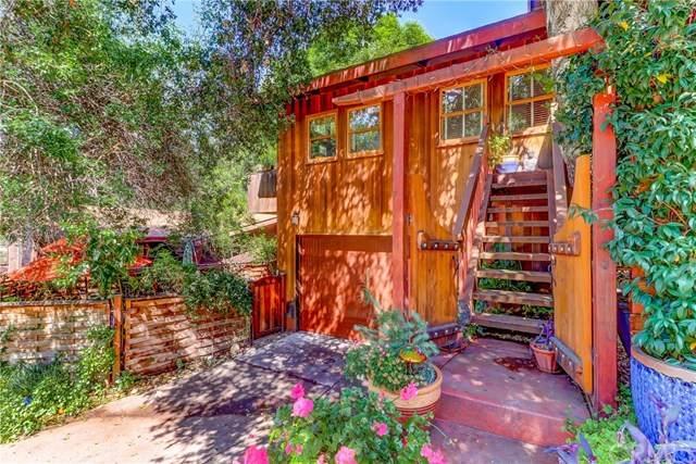 14862 Kitterman Drive, Silverado Canyon, CA 92676 (#PW20080843) :: Wendy Rich-Soto and Associates