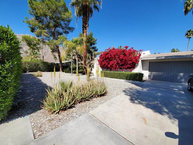 650 Mesquite Avenue, Palm Springs, CA 92264 (#219042305PS) :: RE/MAX Masters