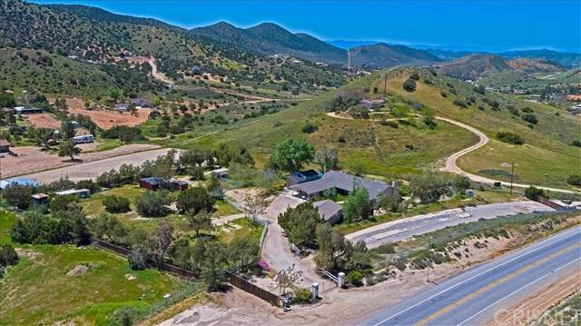 6952 Sierra, Agua Dulce, CA 91390 (#SR20072356) :: Allison James Estates and Homes