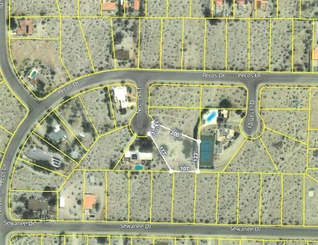 Neches Court, Borrego Springs, CA 92004 (#200020827) :: Faye Bashar & Associates
