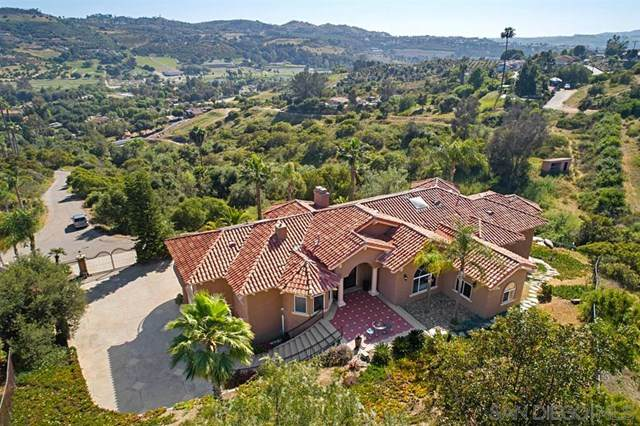 31396 Eagles Perch Ln, Bonsall, CA 92003 (#200021043) :: The Costantino Group | Cal American Homes and Realty