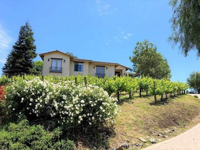 6616 Pacheco Creek Drive - Photo 1