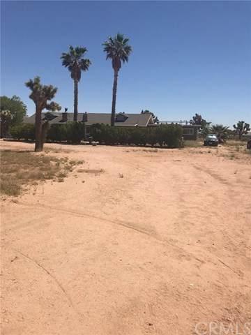 3025 Wesley Road, Joshua Tree, CA 92252 (#CV20090333) :: Berkshire Hathaway HomeServices California Properties