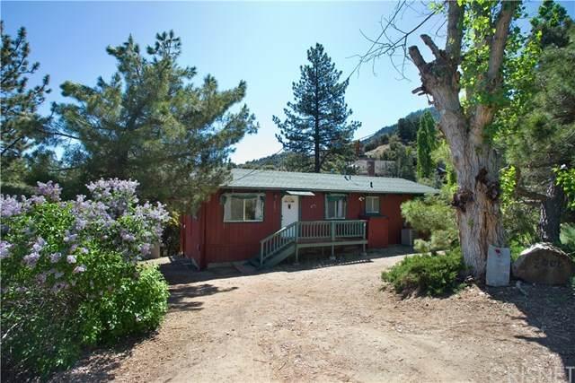 2008 Pioneer Way, Pine Mountain Club, CA 93222 (#SR20080802) :: Berkshire Hathaway HomeServices California Properties