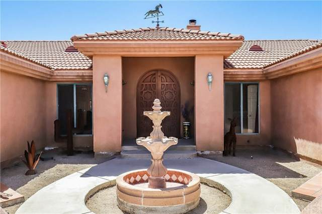 9570 E Avenue Y8, Littlerock, CA 93543 (#SR20091083) :: Allison James Estates and Homes