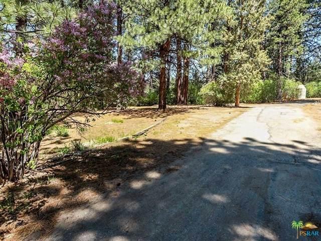 40010 Creek Road - Photo 1