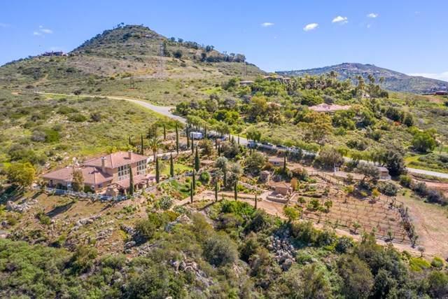 4224 Canyon De Oro, Escondido, CA 92029 (#200022111) :: Coldwell Banker Millennium