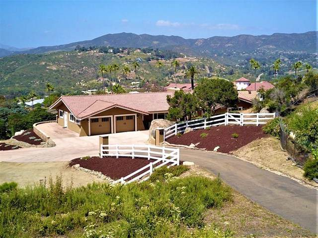 13680 Bear Mountain Rd, Jamul, CA 91935 (#200022269) :: Sperry Residential Group