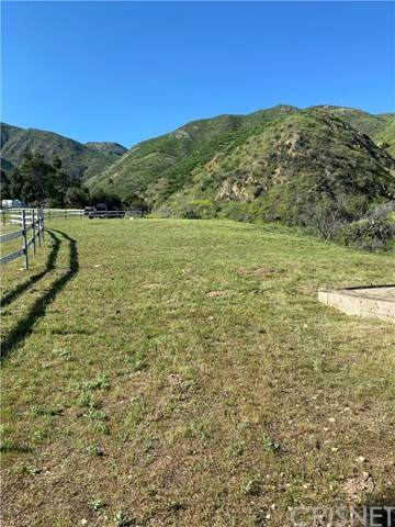 13910 Kagel Canyon Road, Kagel Canyon, CA 91342 (#SR20093189) :: Team Forss Realty Group