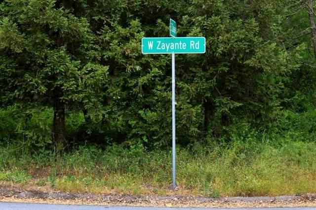 7685 Zayante Road - Photo 1