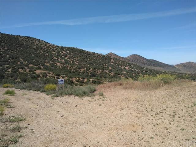 0 Penman Road, Agua Dulce, CA 91390 (#SR20093900) :: Sperry Residential Group