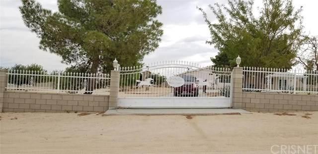 34038 113th Street E, Littlerock, CA 93543 (#SR20093450) :: RE/MAX Empire Properties