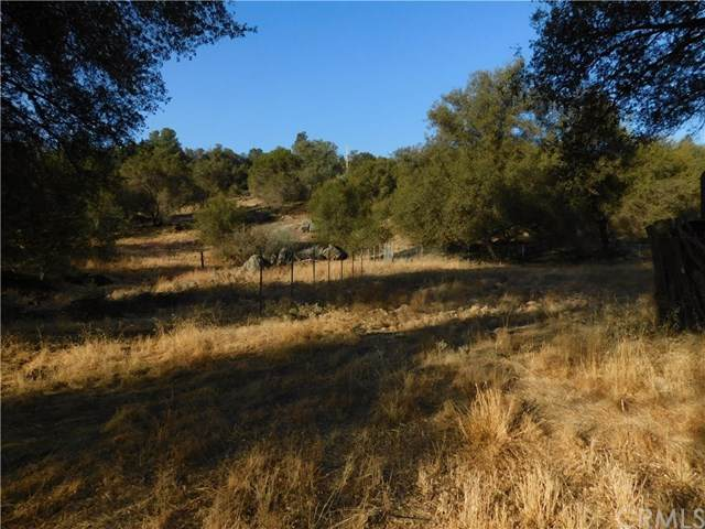 33220 River Knolls Road, Coarsegold, CA 93614 (#MD20095303) :: Better Living SoCal
