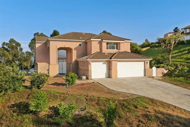 1311 Northview Rd, Escondido, CA 92029 (#200022602) :: The Costantino Group | Cal American Homes and Realty