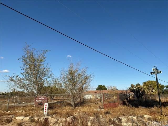 12734 Mesquite Street - Photo 1